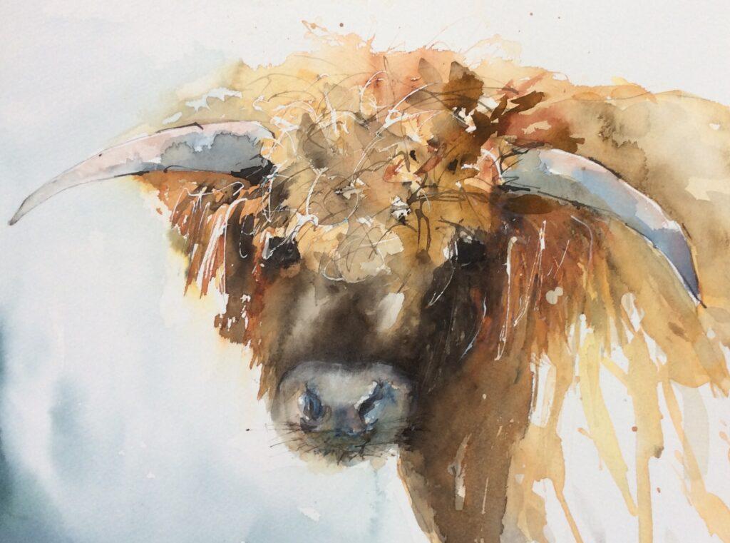 Highland Cow by Carol Whitehouse