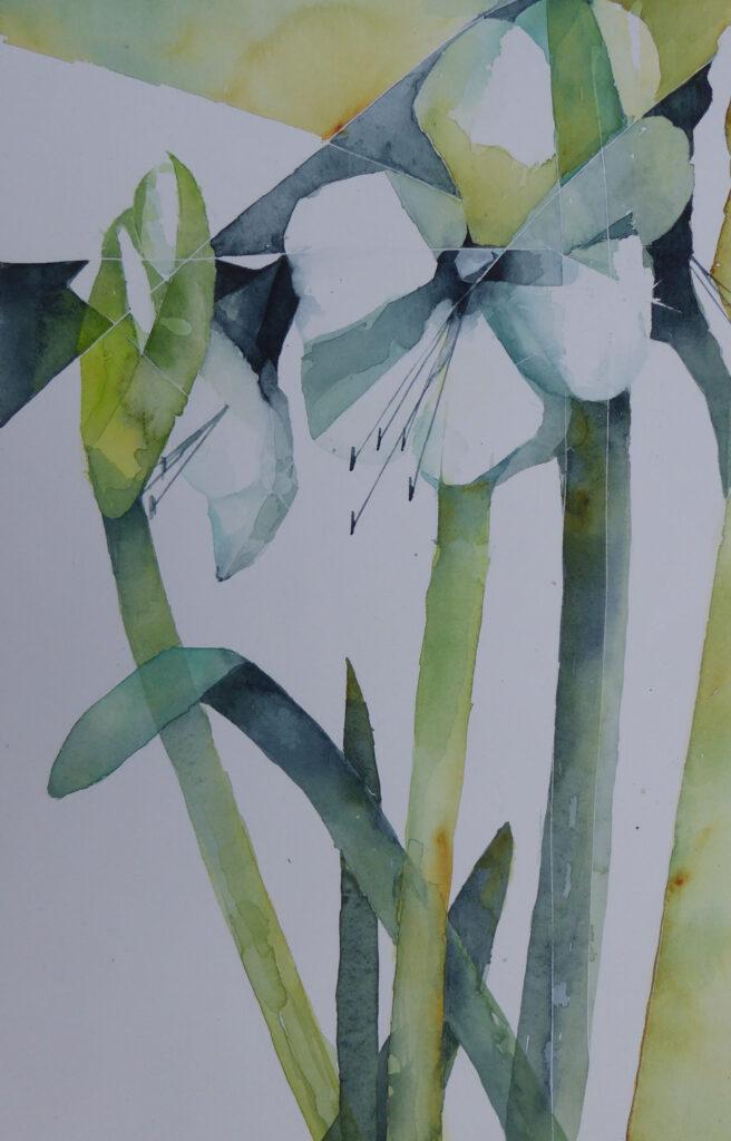 White-Amaryllis-greetings-card-by-Carol-Whitehouse